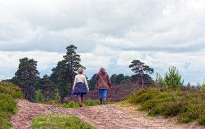 Marche à Pied Ou Randonnée